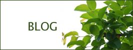 健康調剤薬局ブログ